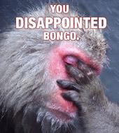 Oh dear, poor Bongo